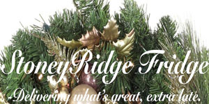 Stoney_Ridge_Fridge_logo